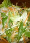 水菜・レタス・人参・大根のサラダ
