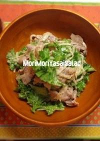 トロリ水晶豚とたっぷり野菜の温サラダ