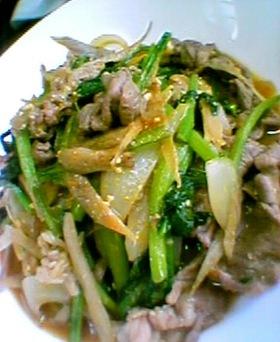 小松菜とごぼうのカレーみそ炒め