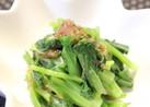 小松菜と梅鰹節和え