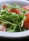 絶品♪水菜とトマトのサラダ