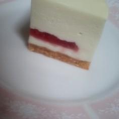 はちみつレアチーズケーキ