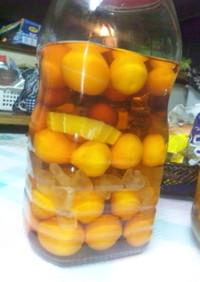 金柑酒(ブランデー)