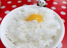 *一口の幸せ♪うずら卵ご飯*