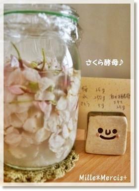 花薫る★桜花酵母