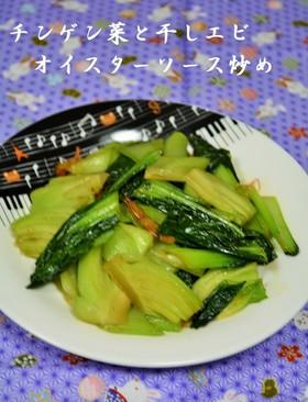 チンゲン菜と干しエビオイスターソース炒め