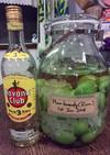 梅酒 ラム酒仕込み(保存瓶/4L)