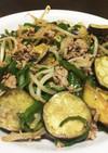 豚挽肉の野菜盛りだくさん炒め