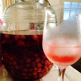 庭のさくらんぼで作る♡さくらんぼ酒