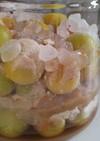 黄熟南高梅ときび糖のシロップ