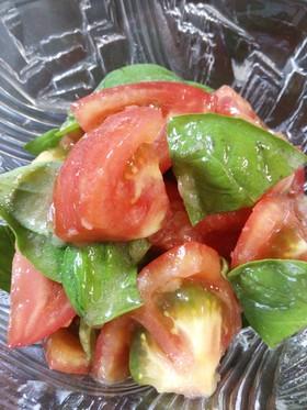 トマト&バジルのサラダ