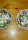 塩麹ヨーグルトドレッシングサラダ