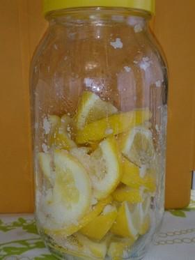 皮まで食べれるメイヤーレモンの塩レモン