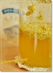 花薫る★カモミール酵母の写真