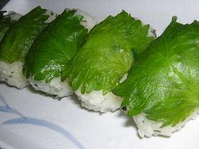 簡単!シソのにぎり寿司