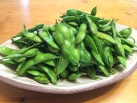 水で5分!枝豆農家直伝簡単美味しい茹で方