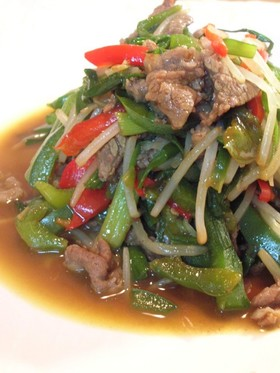 青椒肉絲風★野菜とお肉の中華炒め
