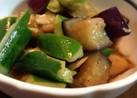 ナスと胡瓜のサラダ
