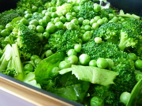 緑サラダ ~簡単ドレッシングで旬の野菜を