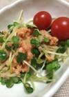 超簡単!ダブル大根と鮭缶の和風サラダ