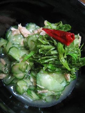 大葉がたっぷりな胡瓜の酢の物
