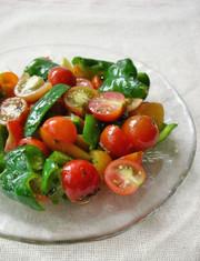 ピーマンとトマトのビタミンサラダの写真
