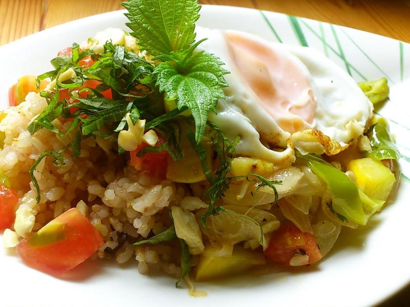 調味料3つ!簡単!酵素玄米で和風ガパオ
