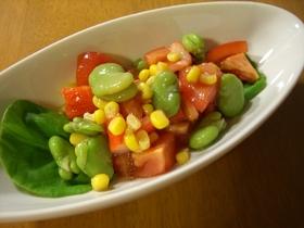 そらまめ&トマトのカラフルサラダ