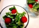 ☆サラダ菜とミニトマトのサラダ☆