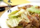 男子絶賛!!肉野菜炒め◀野菜炒め◀◀簡単