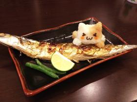 大根おろし ねこ ☆ 猫 アート 秋刀魚