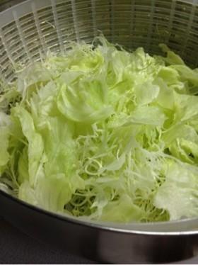 サラダ用キャベツレタスを長持ちさせる方法
