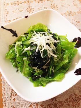 簡単!野菜モリモリ♡チョレギサラダ