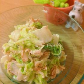 抱えてたべちゃうよ!白菜サラダ