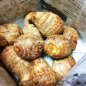 里芋の意外な保存法
