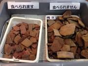 土器型クッキー「Dokkieドッキ—」の写真