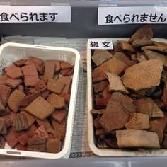 土器型クッキー「Dokkieドッキ—」