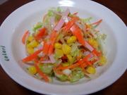 ノンオイル☆コールスローサラダの写真