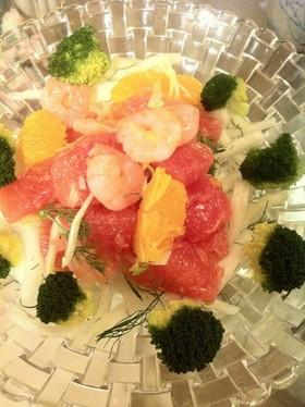 柑橘と白菜とフィノッキオのサラダ