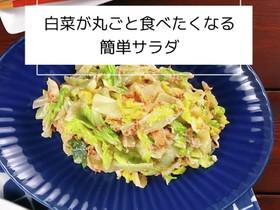白菜が丸ごと食べたくなる♪簡単サラダ♪