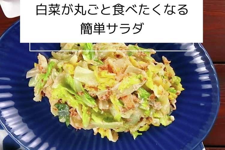 白菜 料理 簡単