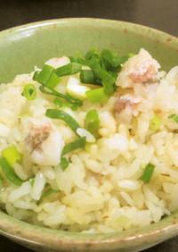愛知の魚100選 ニギスの炊かず飯