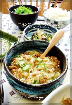 栄養満点☺じゃこおろしオクラ納豆