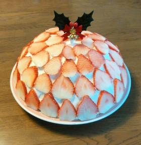 ドームケーキ♪