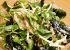 切り干し大根と豆苗サラダ