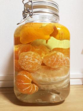 蜜柑と晩白柚とデコポンのリキュール