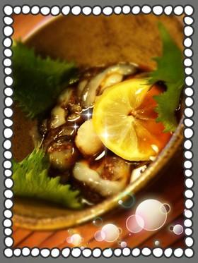 赤ナマコの捌き方とナマコ酢『自己流』