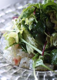鯛のカルパッチョ サラダ仕立て