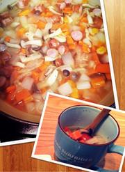 妊婦必見!体重管理の野菜スープの写真