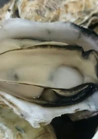 フライパンで作る!超簡単!牡蠣の酒蒸し